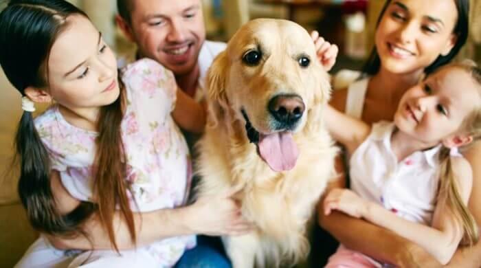 Darf Ich Mir Ein Haustier Kaufen Elternkompass Dein Magazin Fur