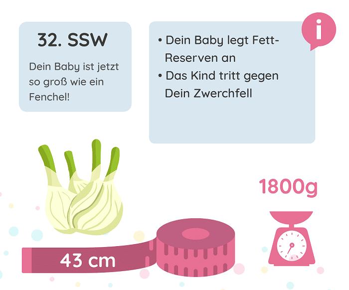 SSW 32: Entwicklung des Babys