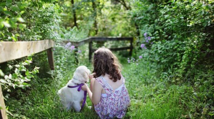10 kinderfreundliche Hunderassen