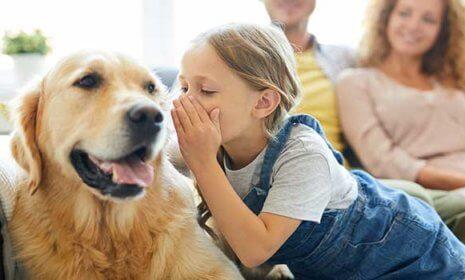 Kinder und der Wunsch nach einem Haustier