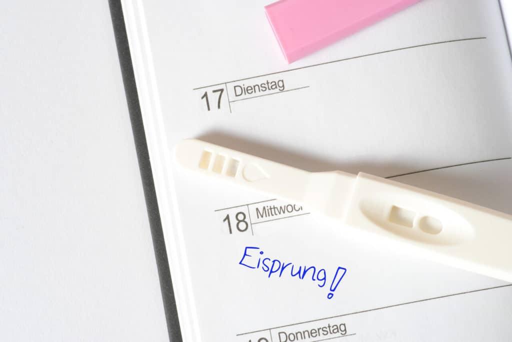 Zervixschleim nach Eisprung
